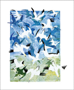 A Barrage of Gannets Blank Card