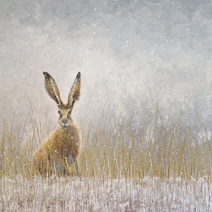 Hello Hare Blank Card