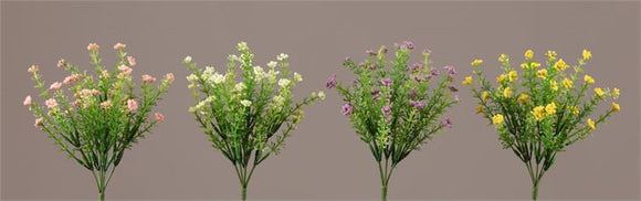 Picks - Pink, Cream, Lavender, Yellow Phlox (2/Ea Color)