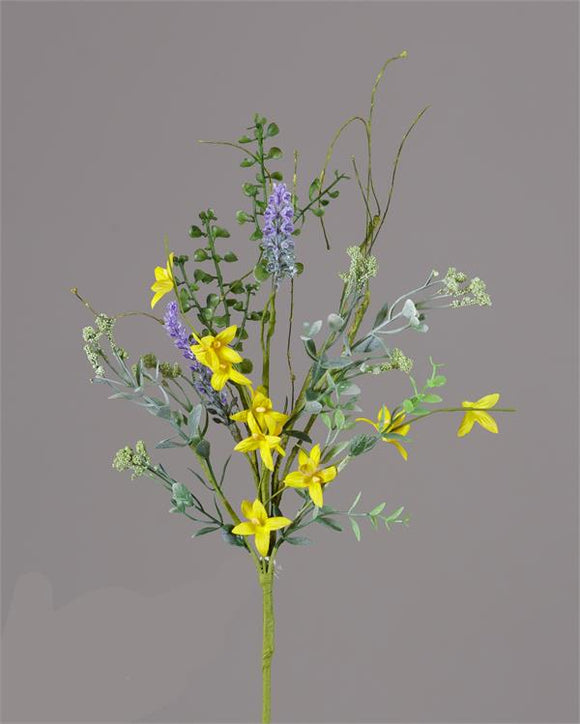 Bush - Forsythia Lavender Spikes (Pk 3)