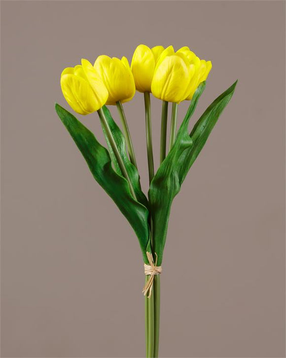 Stem - Yellow Tulip (Pk 2)