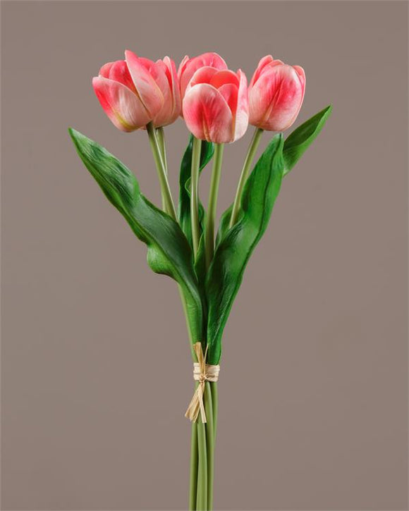 Stem - White and Red Tulip (Pk 2)