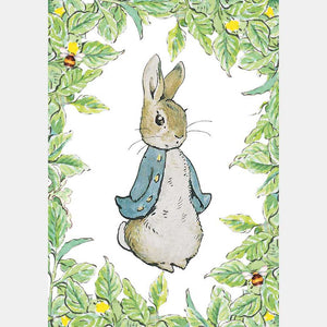 Blank Card- Beatrix Potter: Peter With Leaf Border  BX50