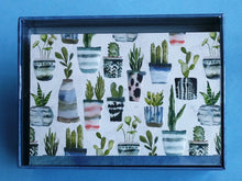 Load image into Gallery viewer, Watercolour Succulents Boxed Notes. #6584