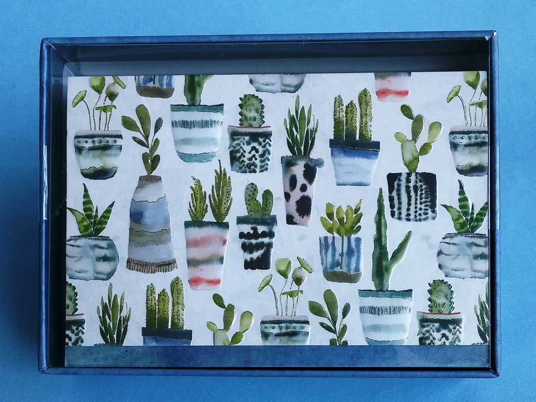 Watercolour Succulents Boxed Notes