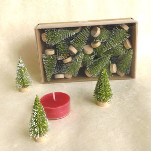 Mini Bottle Brush Trees: box of 24   XM5737