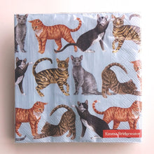 Load image into Gallery viewer, Cats Napkins, light blue  C/L891949