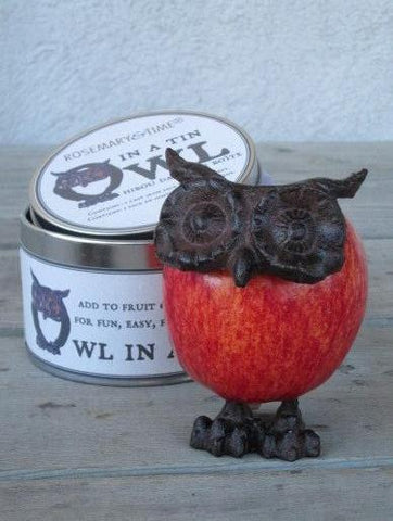 Owl in a Tin