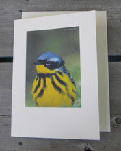 Load image into Gallery viewer, Magnolia Warbler Blank Card