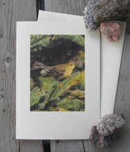 Load image into Gallery viewer, Blackpoll Warbler Blank Card