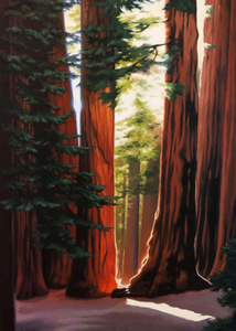 Artists to Watch Birthday Card: Sequoias   #CL474B
