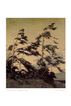 Load image into Gallery viewer, Pine Island, Georgian Bay by Tom Thomson (1877-1917) #31-9659