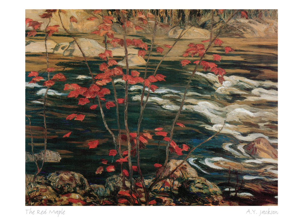 The Red Maple by A. Y. Jackson (1882-1974) #31-9670