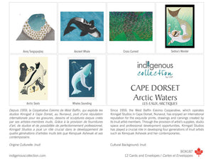 Indigenous Artist Notes, Box of 12 - Cape Dorset: Arctic Waters    BOX187