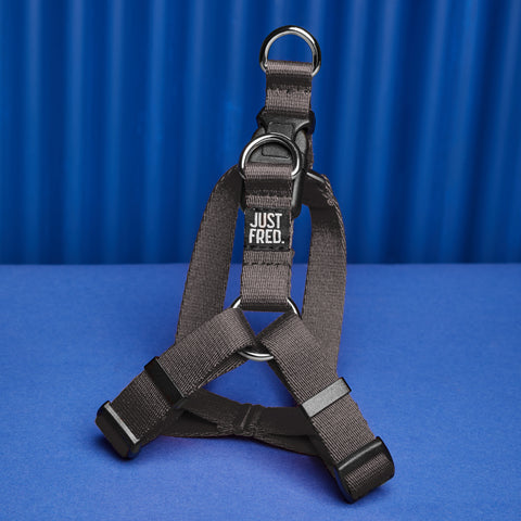 Dog Harness Kit.