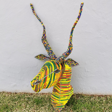 Load image into Gallery viewer, GODFREY0014 - Rainbow Kudu Head