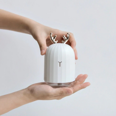 miss-misty-lovely-diffuser-humidifier