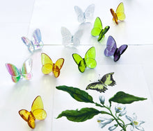 Load image into Gallery viewer, Baccarat Lucky Butterfly