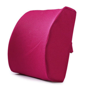 Day Care - Lumbar Support Seat Cushion