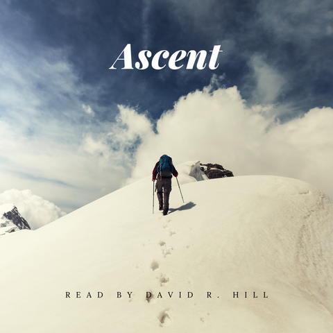 Ascent by Matt Walley