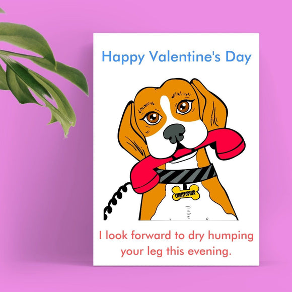 Valentine's Day Card - Dry Hump Cards Tasteless Greetings