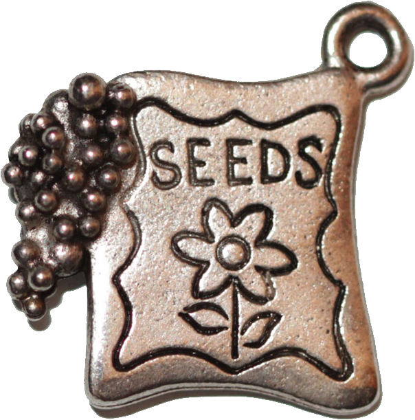 Seed Packet - Silver