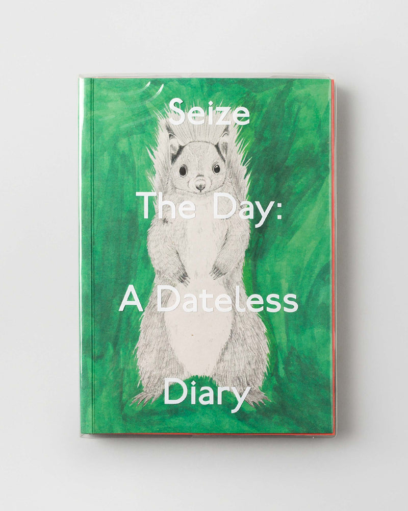 Seize the Day: A Dateless Planner (Diary)