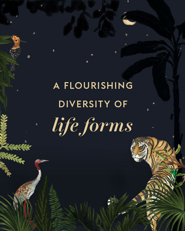 A Flourishing Diversity of Life Forms