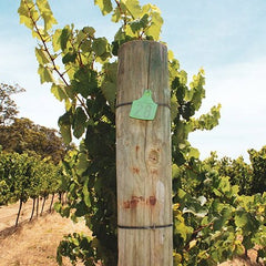 Vineyard post at Miles from Nowhere