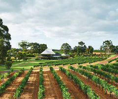 Vineyard and restaurant at Vasse Felix