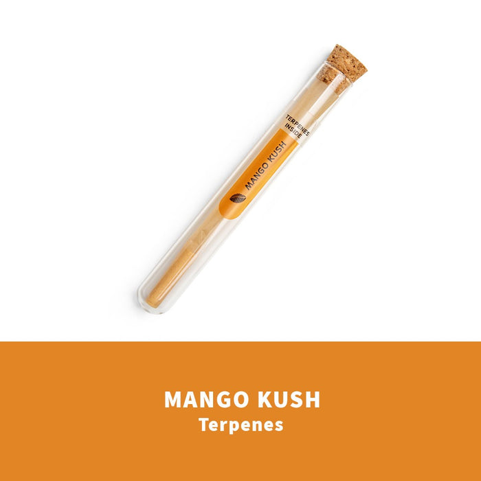 KS PRE ROLLED CONE ENRICHED WITH TERPENES 3 FLAVORS IN GLASS TUBE - 18 UNTIS