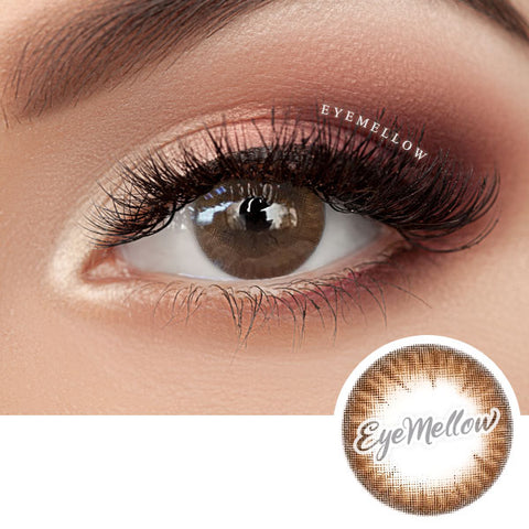 Shasha Choco Brown Colored Contact Lenses (Toric)