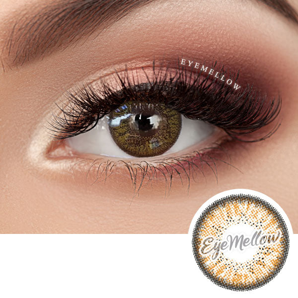 Shiny Brown Colored Contact Lenses (Toric)
