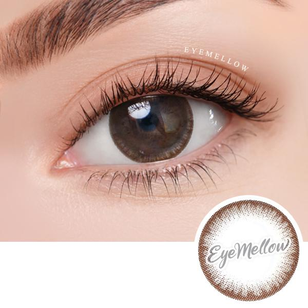 Secret Chocolate Colored Contact Lenses (Hyperopia)