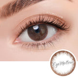 Chic Line Choco Colored Contact Lenses