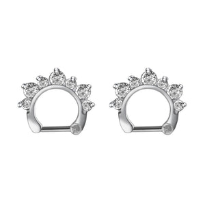 Arardo 2Pcs 20G 316L Stainless Steel CZ Nose Rings Piercing Jewelry AB0003-1