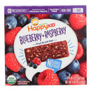Organic Blueberry & Raspberry Fruit & Oat Bar - 4.95oz