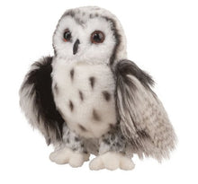 Load image into Gallery viewer, Douglas Cresent Silver Owl Plush Stuffed Animal
