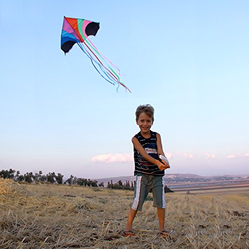 Stoie's Huge Rainbow Kite For Kids And Adults 1.6 M Wide 100 Meter String Rainbow Color Built To Last