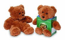 Load image into Gallery viewer, Spa Comforts Hot Teddy