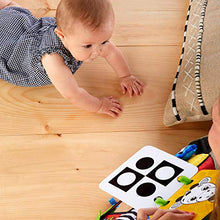 Load image into Gallery viewer, Baby Einstein Flip For Art High Contrast Floor Activity Mirror with Take Along Cards, Newborn Plus