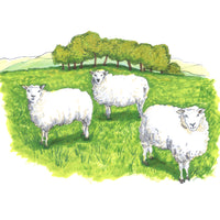 Digital Download - Three Sheep