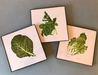 Framed Escarole Art Print