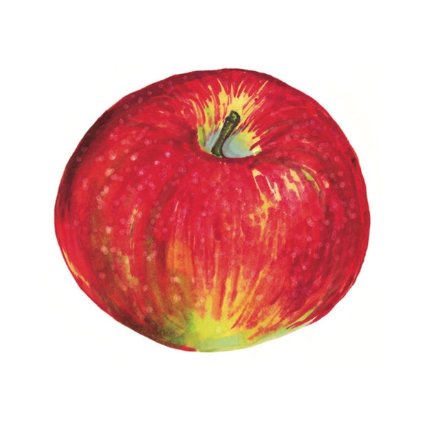 Baldwin Apple Art Print