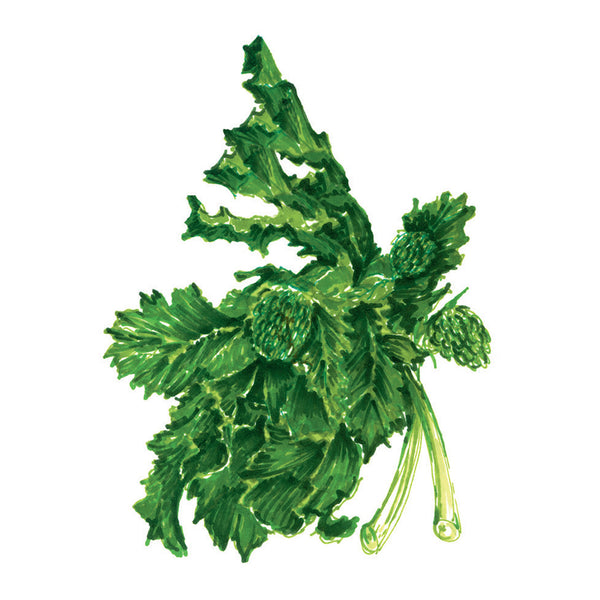 Broccoli Rabe Art Print
