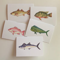 Set of 5 Fish Greeting Cards