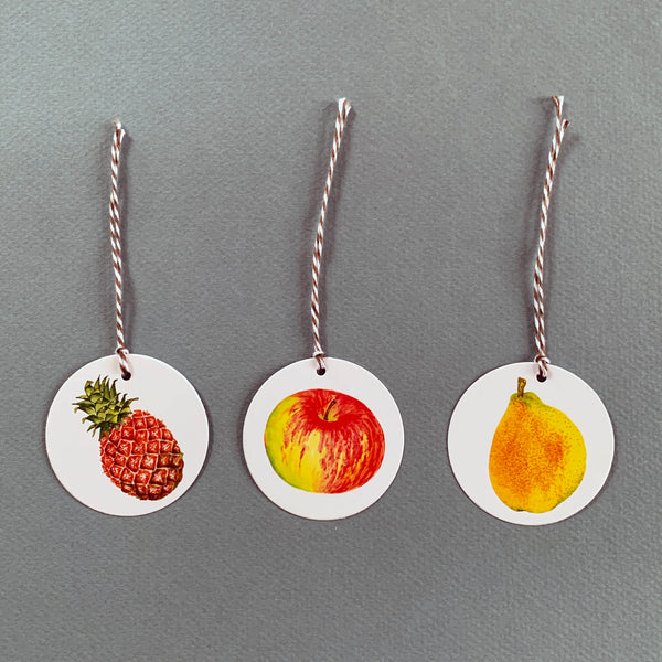 Set of 12 Fruit Gift Tags