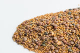 Mumm's Organic Sprouting Seeds - Spicy Lentil Crunch