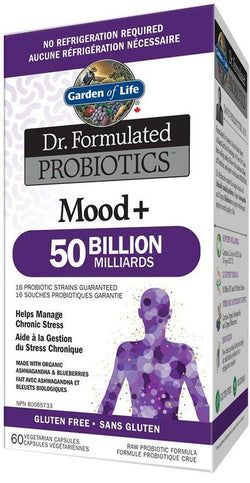 Dr. Formulated Probiotics Mood+