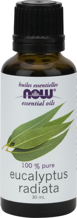 Eucalyptus Radiata Oil 100% Pure